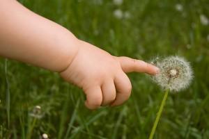 las alergias en los niños